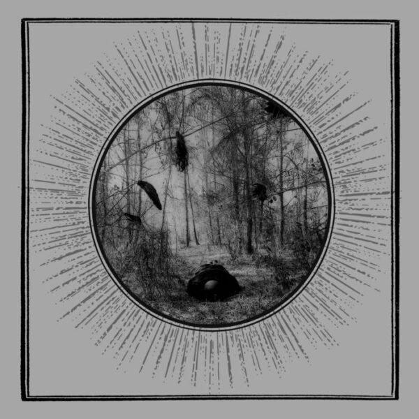 Grieg – Detritus